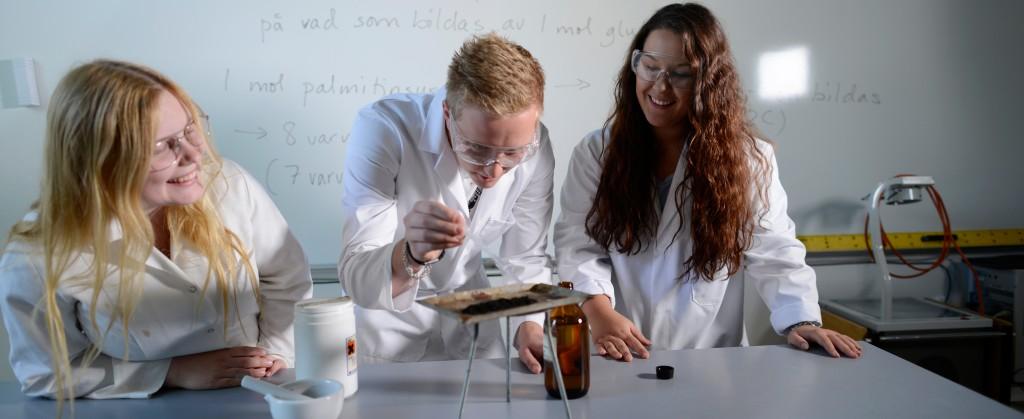 Bollerup naturvetenskap